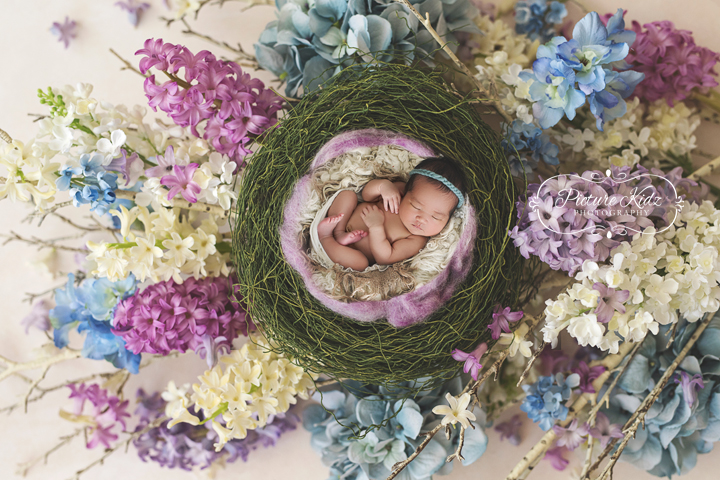 ER PICTUREKIDZ CARMEN 9713 Nest-Lily