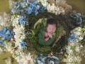 ER PICTUREKIDZ NINA 9000 Nest-Tina